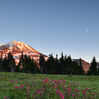 mount rainier and moon