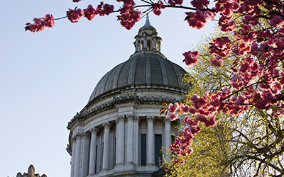 wa_state_capitol_cupola_cherry_blossoms_blog_horizontal_400x250